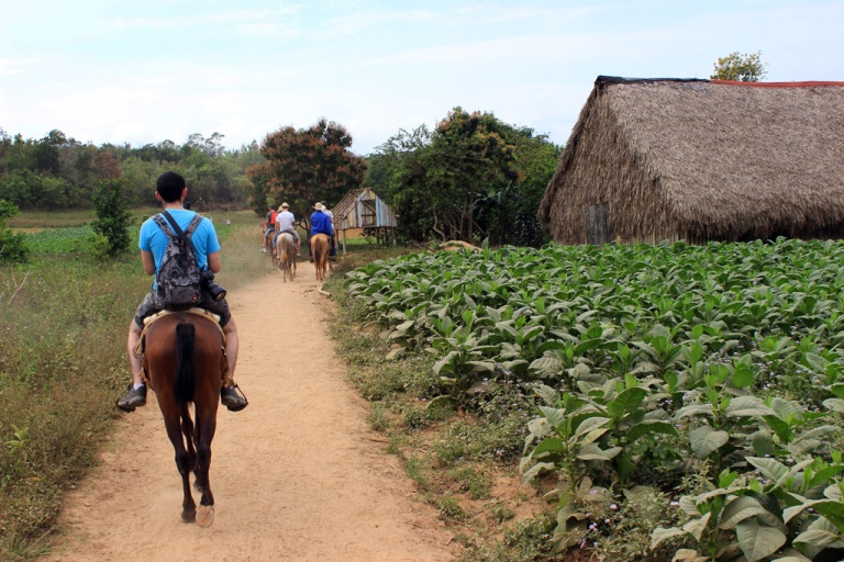 Horse-riding-through-the-tobacco-fields-in-the-Vinales-valley,-Cuba.jpg